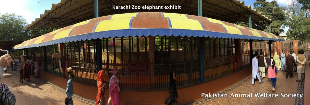 Karachi zoo elephant exhibit